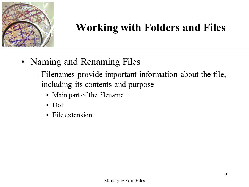 XP Managing Your Files 5 Working with Folders and Files Naming and Renaming Files –Filenames provide important information about the file, including its contents and purpose Main part of the filename Dot File extension
