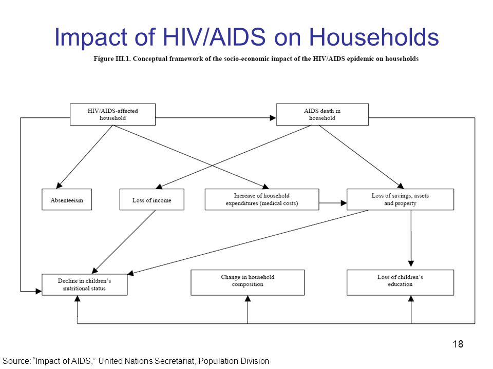 18 Impact of HIV/AIDS on Households Source: Impact of AIDS, United Nations Secretariat, Population Division