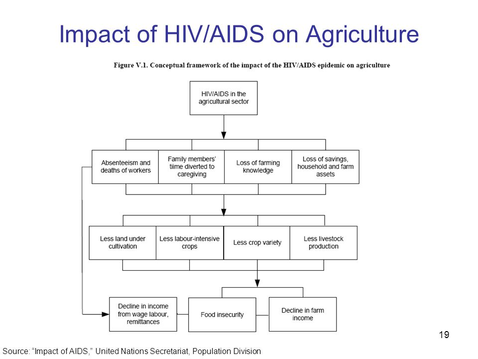 19 Impact of HIV/AIDS on Agriculture Source: Impact of AIDS, United Nations Secretariat, Population Division