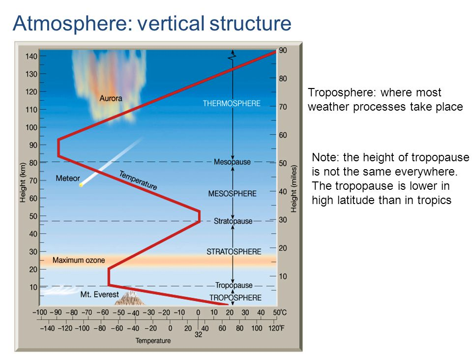 Atmosphere: vertical structure Troposphere: where most weather processes take place Note: the height of tropopause is not the same everywhere.