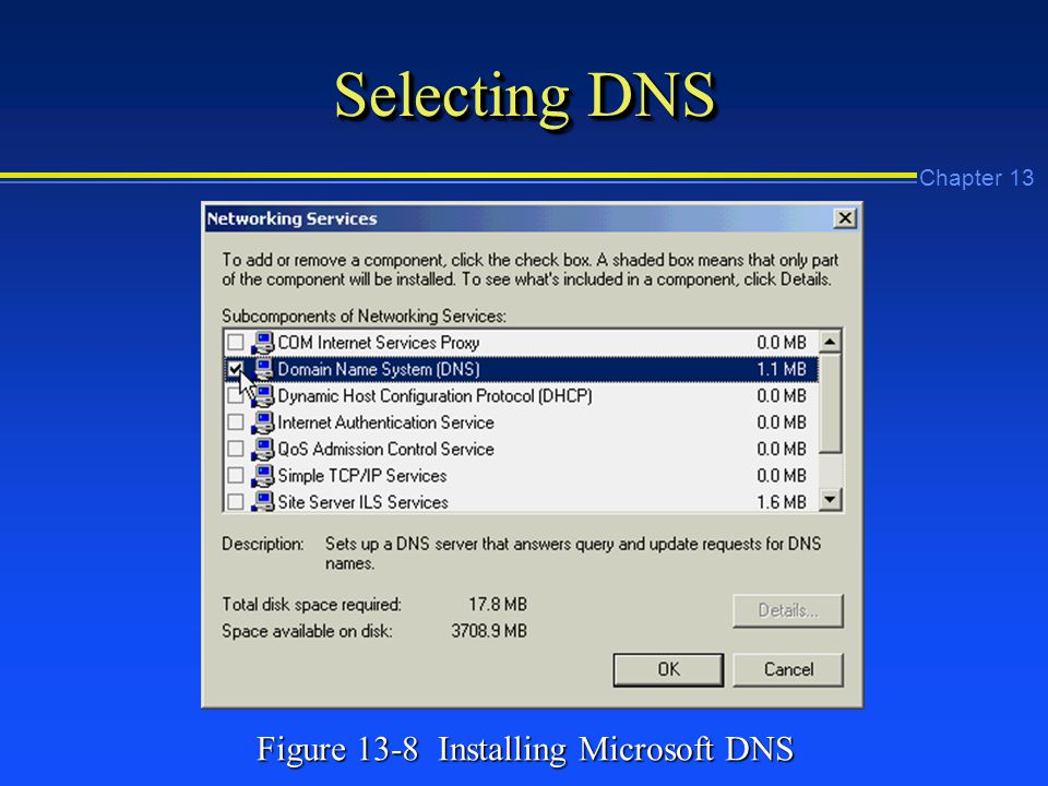 Chapter 13 Selecting DNS Figure 13-8 Installing Microsoft DNS