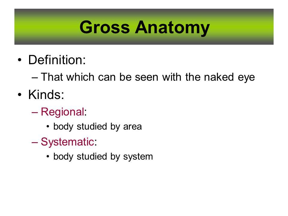 1 Essentials Of Human Anatomy Essentials Of Human Anatomy