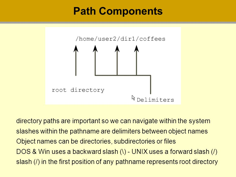 Path Components directory paths are important so we can navigate within the system slashes within the pathname are delimiters between object names Object names can be directories, subdirectories or files DOS & Win uses a backward slash (\) - UNIX uses a forward slash (/) slash (/) in the first position of any pathname represents root directory