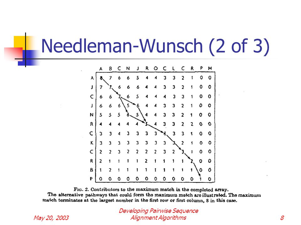 May 20, 2003 Developing Pairwise Sequence Alignment Algorithms8 Needleman-Wunsch (2 of 3)