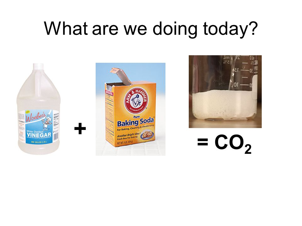 What are we doing today + = CO 2