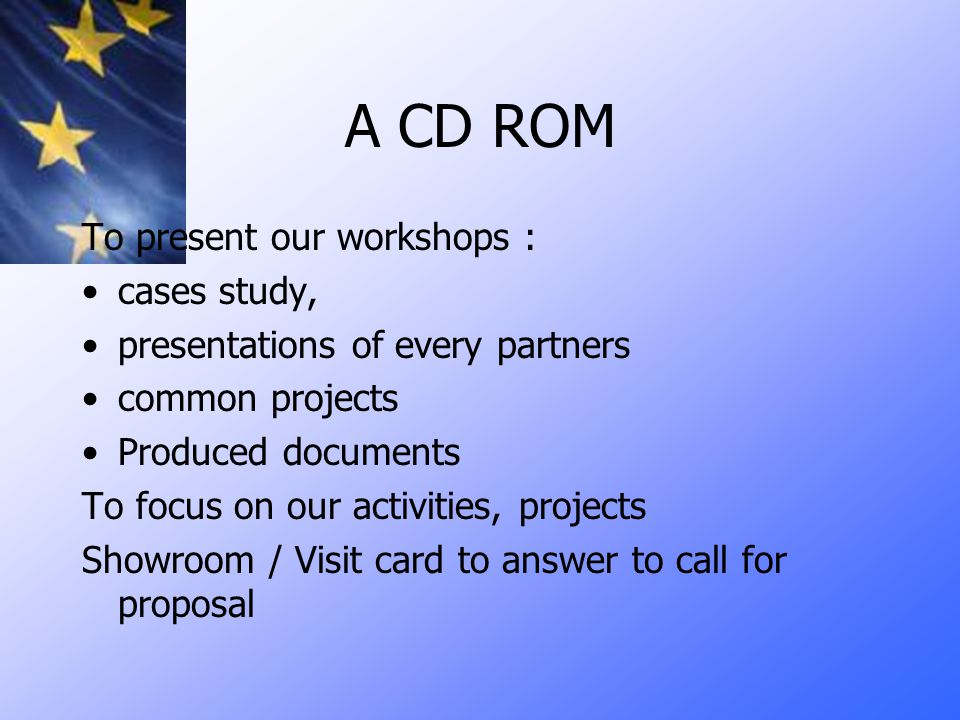 A CD ROM To present our workshops : cases study, presentations of every partners common projects Produced documents To focus on our activities, projects Showroom / Visit card to answer to call for proposal