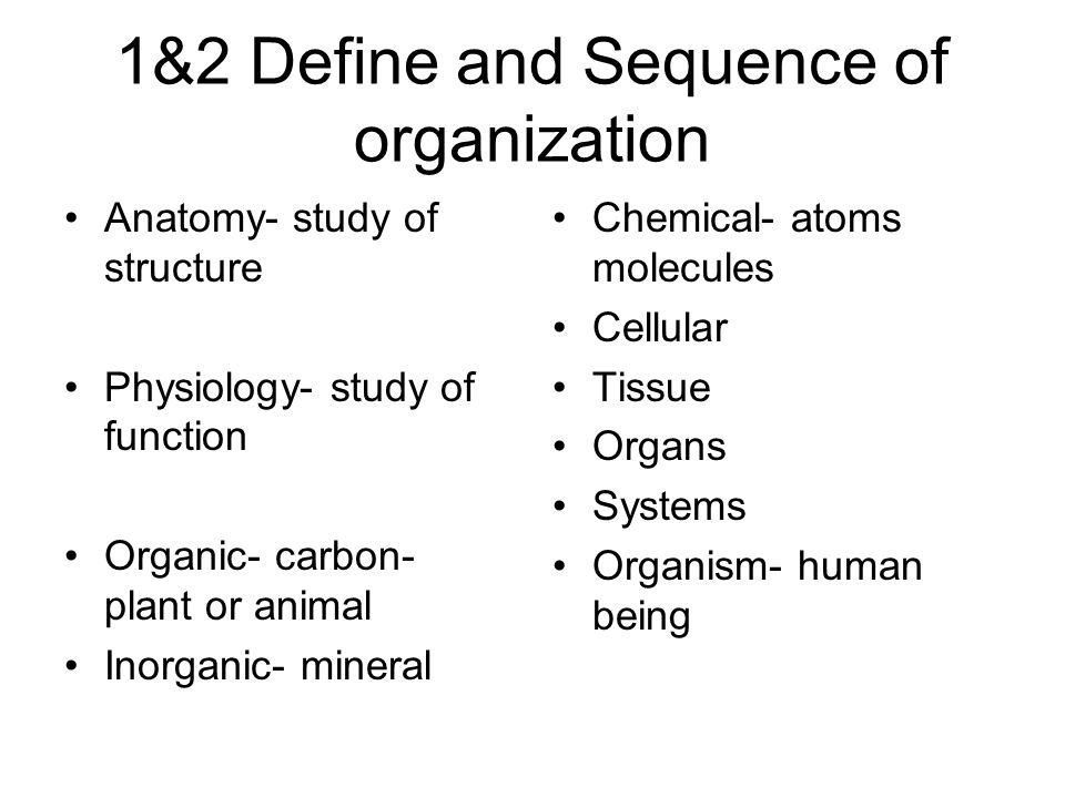 DENT 1120 Related Anatomy Unit 1 Into to the Human Body. - ppt download