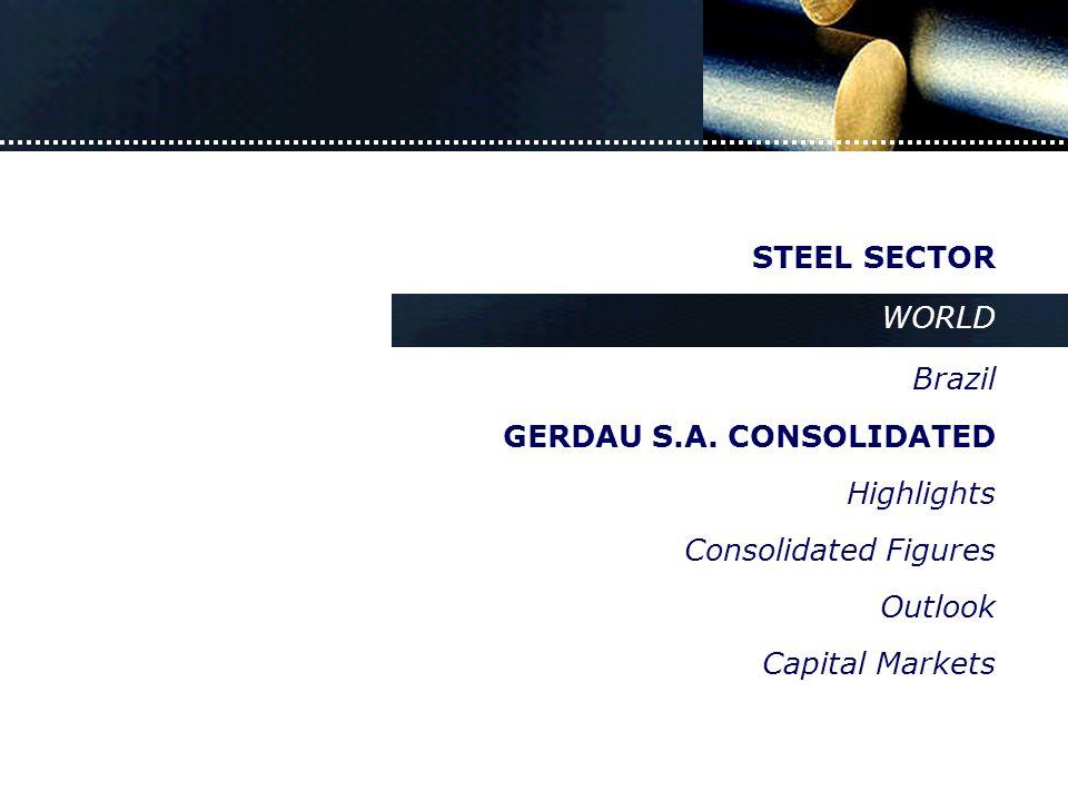 New York – June 13 th, 2003 JP Morgan  STEEL SECTOR WORLD