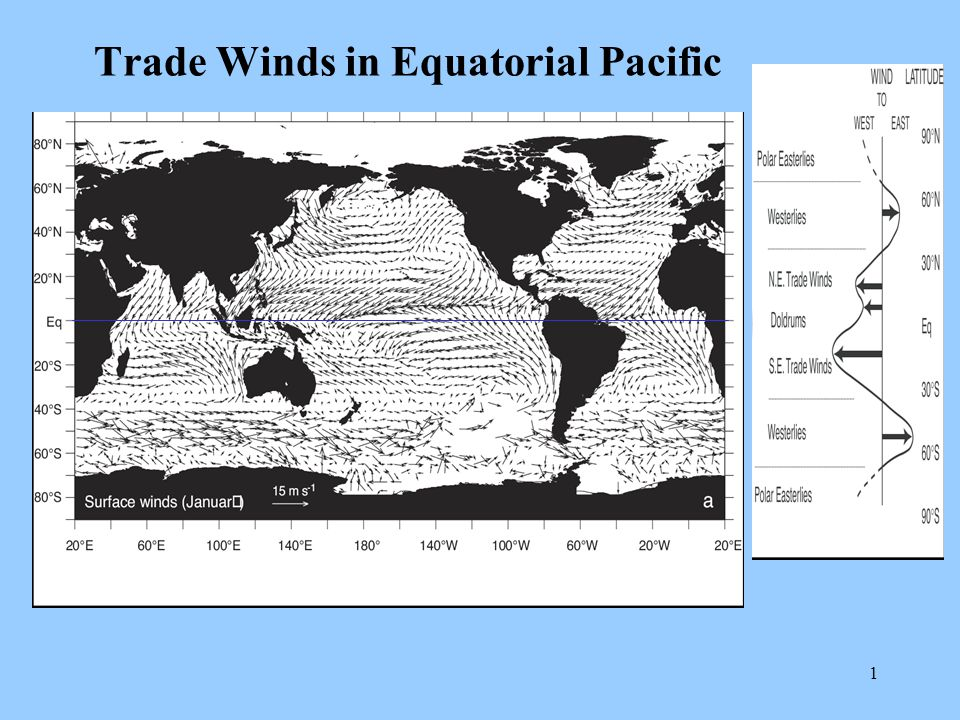 1 Trade Winds in Equatorial Pacific