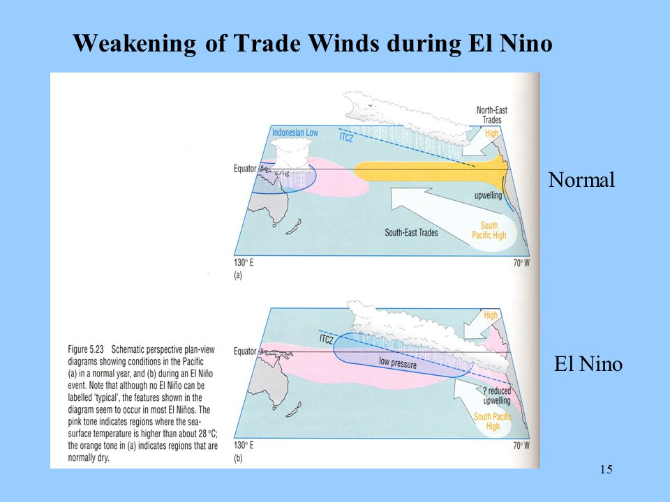 15 Weakening of Trade Winds during El Nino Normal El Nino