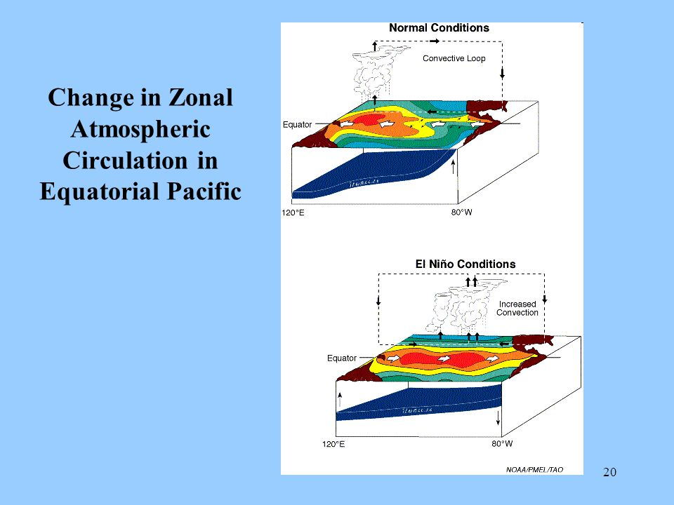 20 Change in Zonal Atmospheric Circulation in Equatorial Pacific