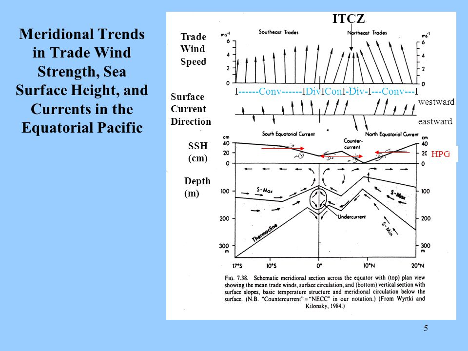 5 Meridional Trends in Trade Wind Strength, Sea Surface Height, and Currents in the Equatorial Pacific Trade Wind Speed Surface Current Direction SSH (cm) Depth (m) HPG westward eastward ITCZ I------Conv------IDivIConI-Div-I---Conv---I