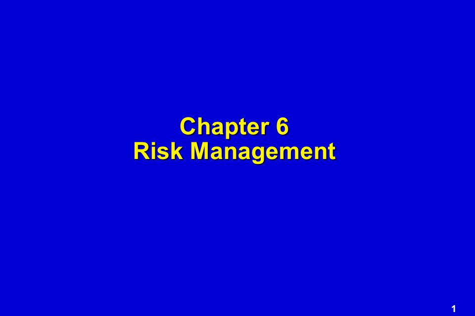 1 Chapter 6 Risk Management