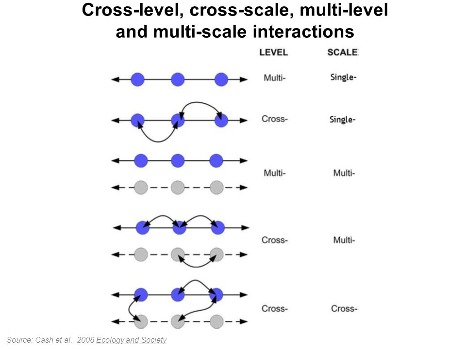 Cross-level, cross-scale, multi-level and multi-scale interactions Source: Cash et al., 2006 Ecology and Society