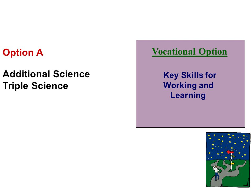 Vocational Option Key Skills for Working and Learning Option A Additional Science Triple Science