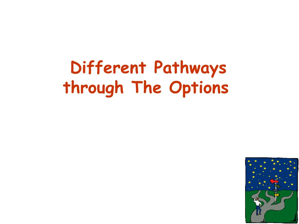 Different Pathways through The Options