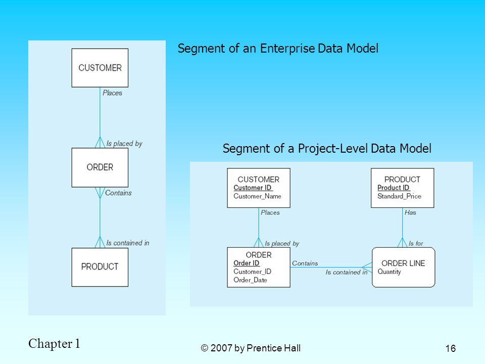 Chapter 1 © 2007 by Prentice Hall 16 Segment of an Enterprise Data Model Segment of a Project-Level Data Model