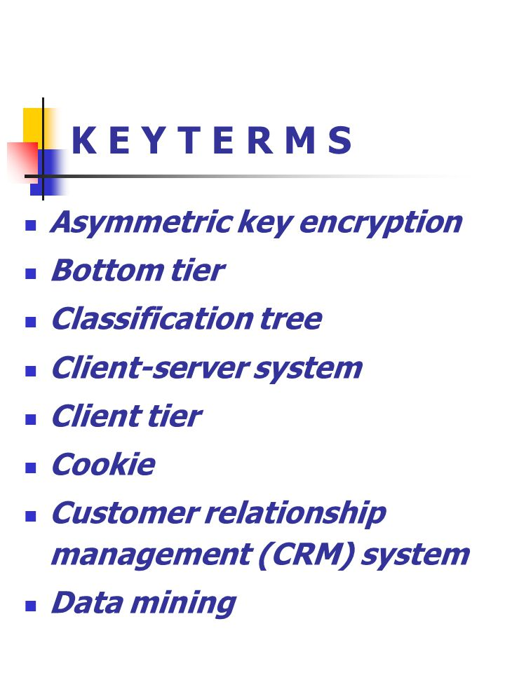 K E Y T E R M S Asymmetric key encryption Bottom tier Classification tree Client-server system Client tier Cookie Customer relationship management (CRM) system Data mining