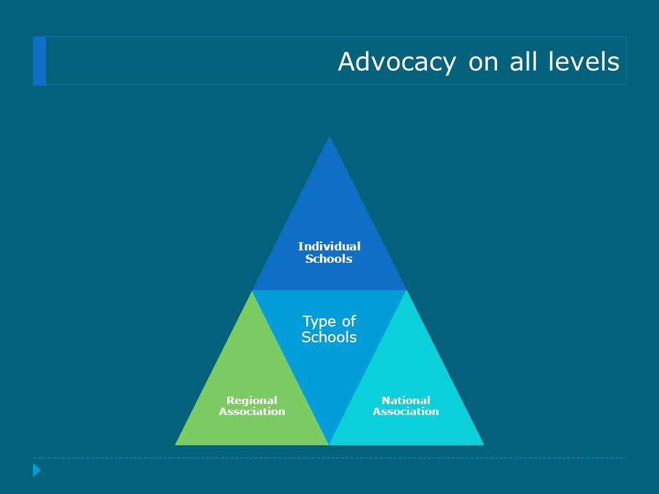 Advocacy on all levels Individual Schools Regional Association Type of Schools National Association