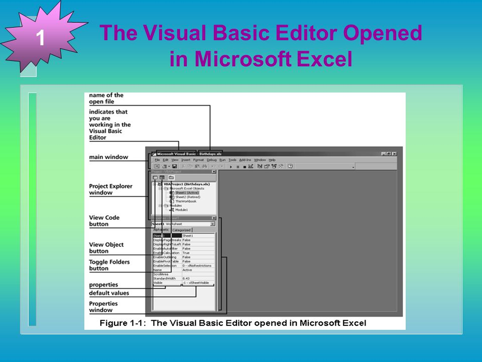 The Visual Basic Editor Opened in Microsoft Excel 1