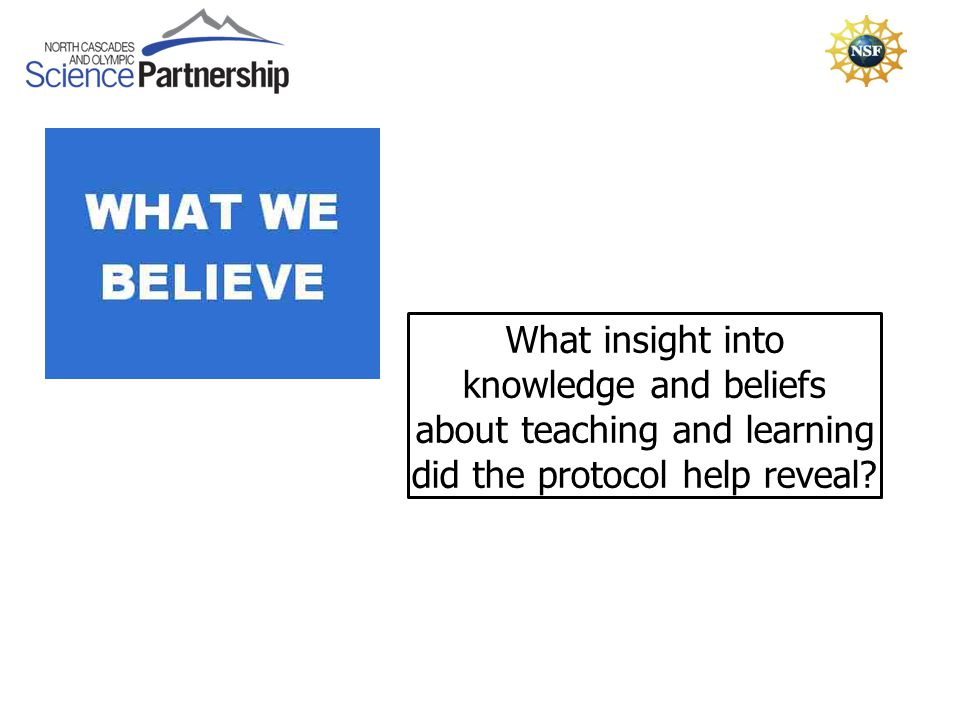 What insight into knowledge and beliefs about teaching and learning did the protocol help reveal