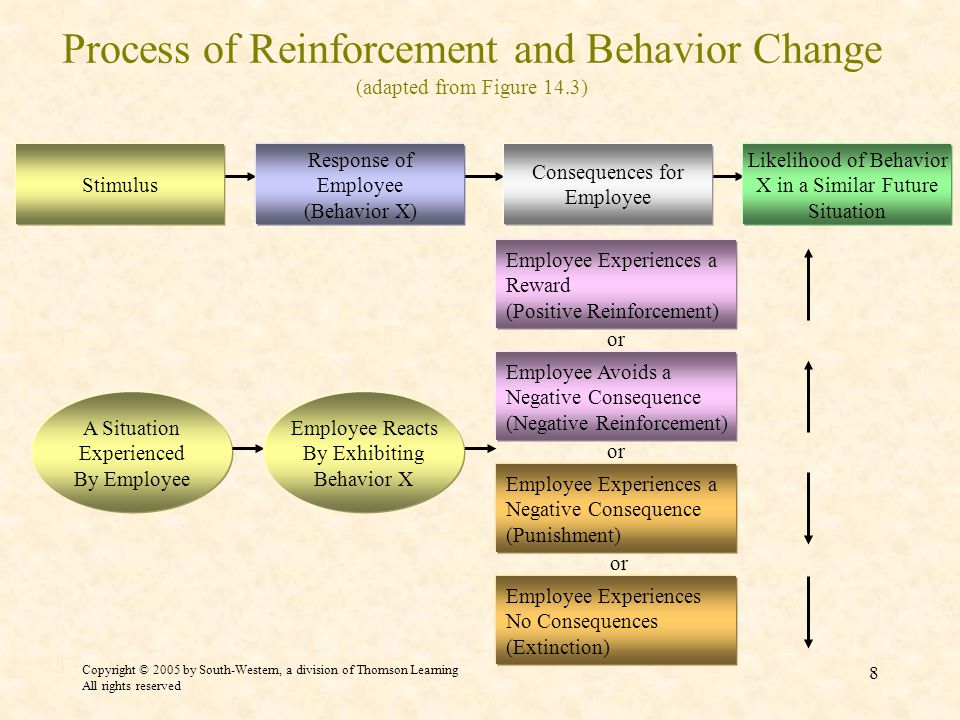 Copyright © 2005 by South-Western, a division of Thomson Learning All rights reserved 8 Process of Reinforcement and Behavior Change (adapted from Figure 14.3) Employee Avoids a Negative Consequence (Negative Reinforcement) or Employee Experiences a Reward (Positive Reinforcement) Employee Experiences No Consequences (Extinction) Employee Experiences a Negative Consequence (Punishment) A Situation Experienced By Employee Employee Reacts By Exhibiting Behavior X Stimulus Response of Employee (Behavior X) Consequences for Employee Likelihood of Behavior X in a Similar Future Situation
