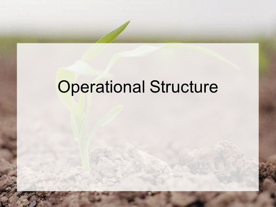 Operational Structure