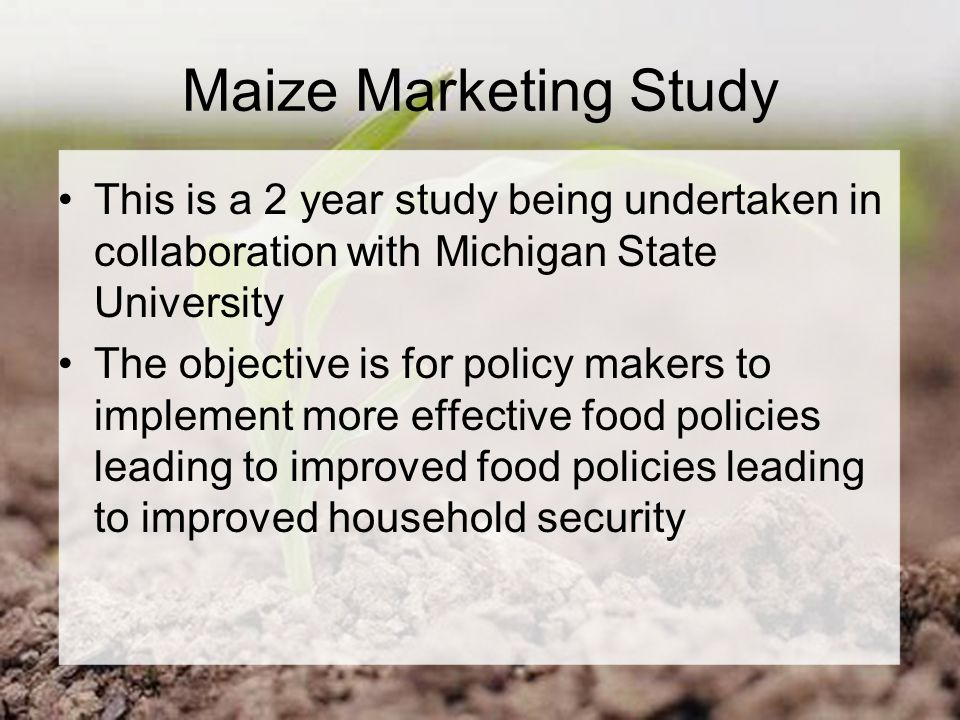 Maize Marketing Study This is a 2 year study being undertaken in collaboration with Michigan State University The objective is for policy makers to implement more effective food policies leading to improved food policies leading to improved household security