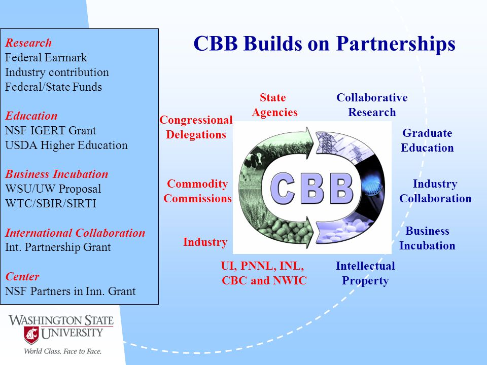CBB Builds on Partnerships Research Federal Earmark Industry contribution Federal/State Funds Education NSF IGERT Grant USDA Higher Education Business Incubation WSU/UW Proposal WTC/SBIR/SIRTI International Collaboration Int.
