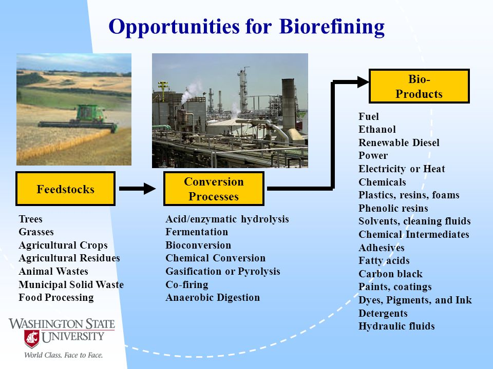 Opportunities for Biorefining Conversion Processes Trees Grasses Agricultural Crops Agricultural Residues Animal Wastes Municipal Solid Waste Food Processing Fuel Ethanol Renewable Diesel Power Electricity or Heat Chemicals Plastics, resins, foams Phenolic resins Solvents, cleaning fluids Chemical Intermediates Adhesives Fatty acids Carbon black Paints, coatings Dyes, Pigments, and Ink Detergents Hydraulic fluids Acid/enzymatic hydrolysis Fermentation Bioconversion Chemical Conversion Gasification or Pyrolysis Co-firing Anaerobic Digestion Feedstocks Bio- Products