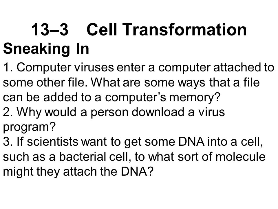 13–3Cell Transformation Sneaking In 1.
