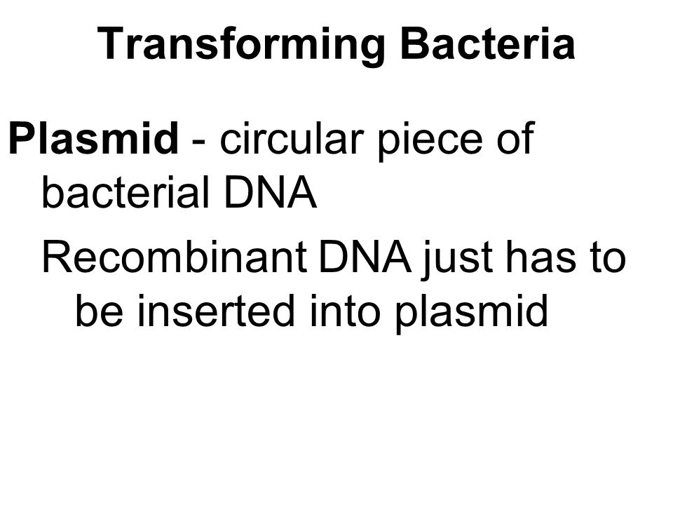 Transforming Bacteria Plasmid - circular piece of bacterial DNA Recombinant DNA just has to be inserted into plasmid