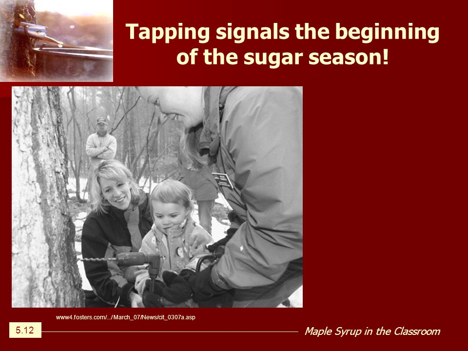 Maple Syrup in the Classroom Tapping signals the beginning of the sugar season.