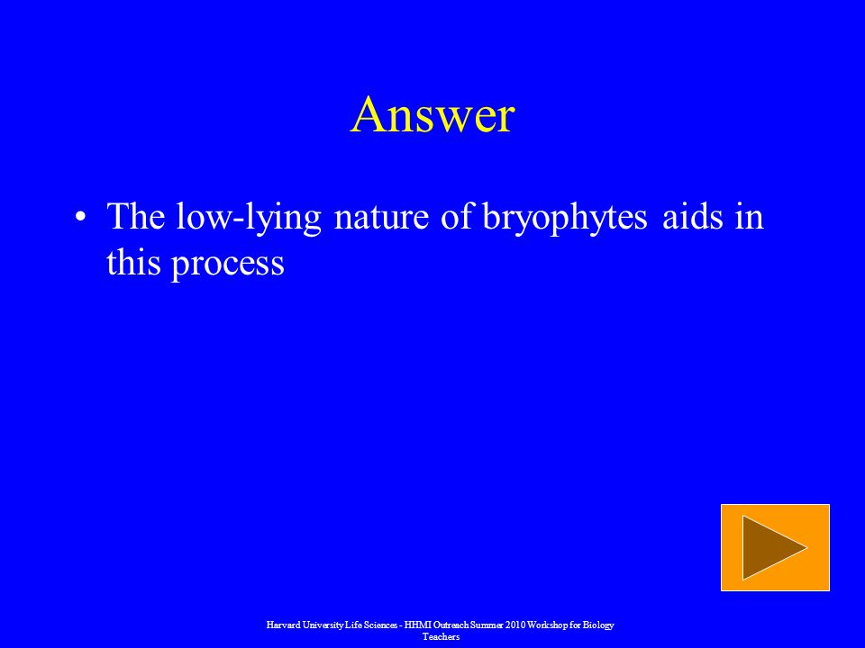 Answer The low-lying nature of bryophytes aids in this process Harvard University Life Sciences - HHMI Outreach Summer 2010 Workshop for Biology Teachers