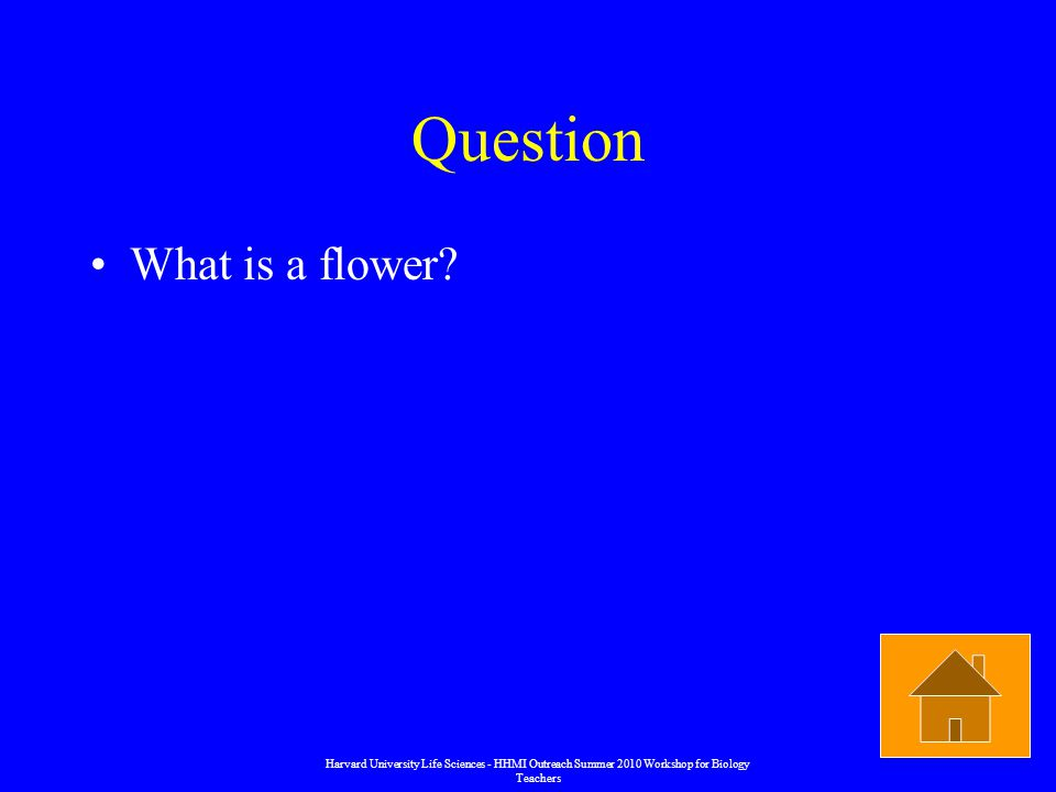 Question What is a flower.