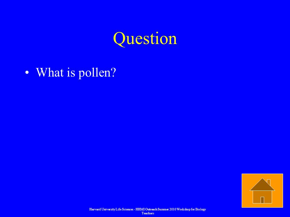 Question What is pollen.