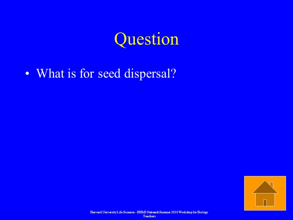 Question What is for seed dispersal.