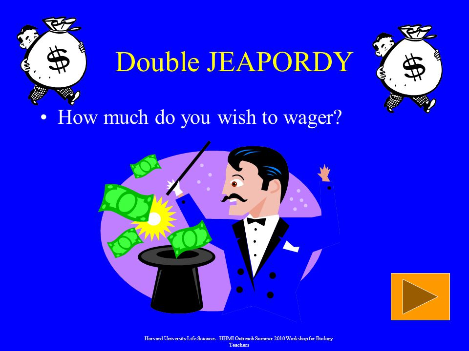 Double JEAPORDY How much do you wish to wager.