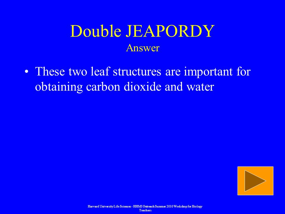 Double JEAPORDY Answer These two leaf structures are important for obtaining carbon dioxide and water Harvard University Life Sciences - HHMI Outreach Summer 2010 Workshop for Biology Teachers