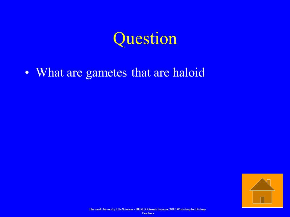 Question What are gametes that are haloid Harvard University Life Sciences - HHMI Outreach Summer 2010 Workshop for Biology Teachers