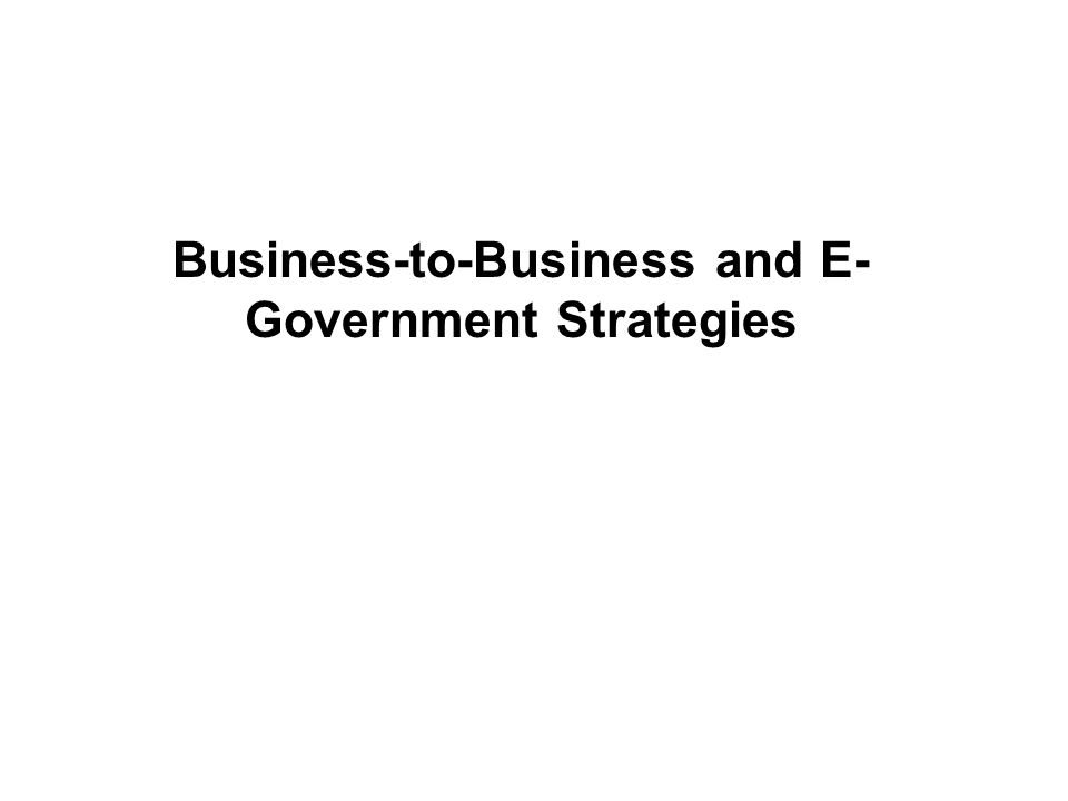 Business-to-Business and E- Government Strategies