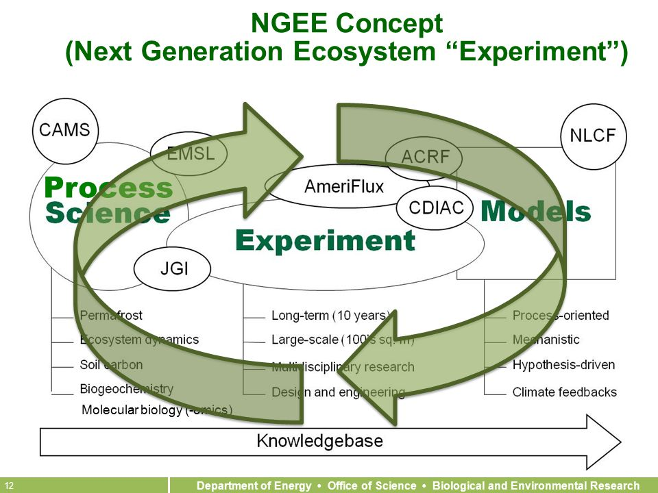 Department of Energy Office of Science Biological and Environmental Research 12 Molecular biology (-omics) NGEE Concept (Next Generation Ecosystem Experiment ) Process