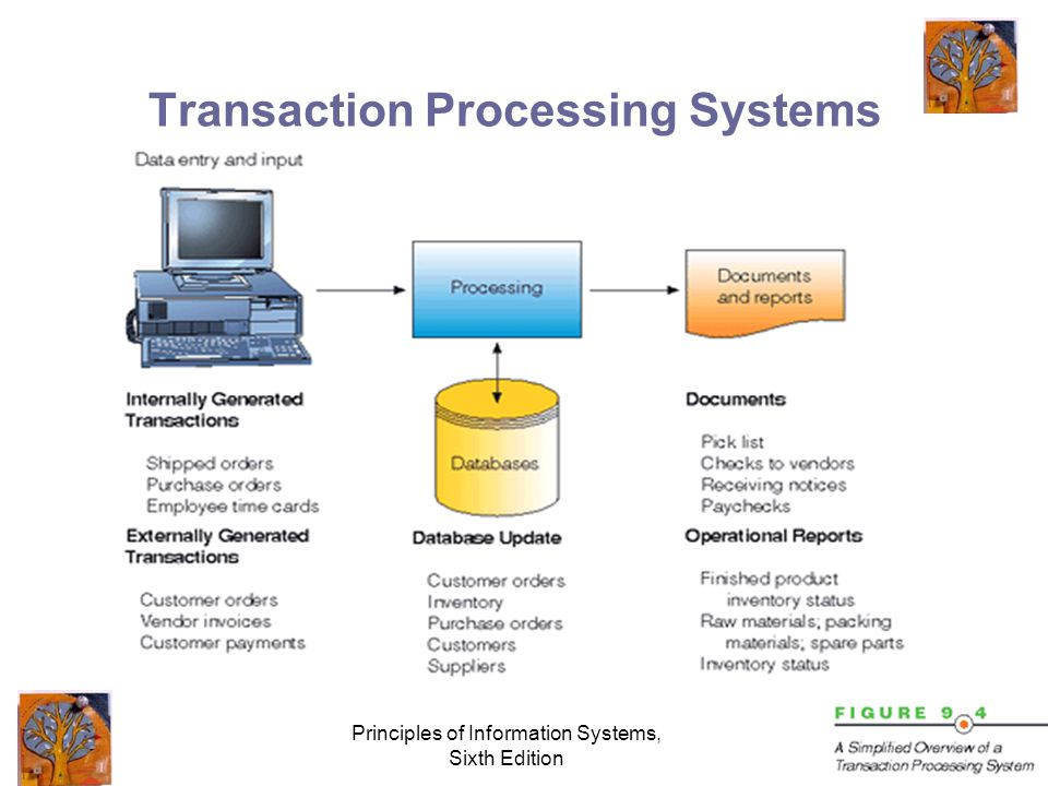 Principles of Information Systems, Sixth Edition Transaction Processing Systems