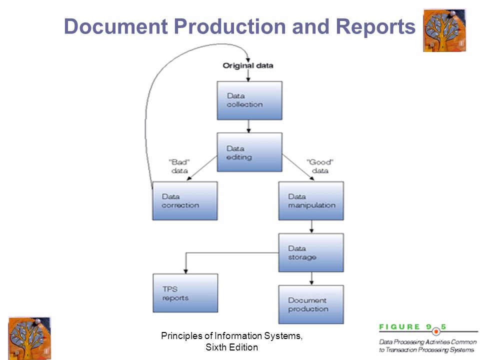 Principles of Information Systems, Sixth Edition Document Production and Reports