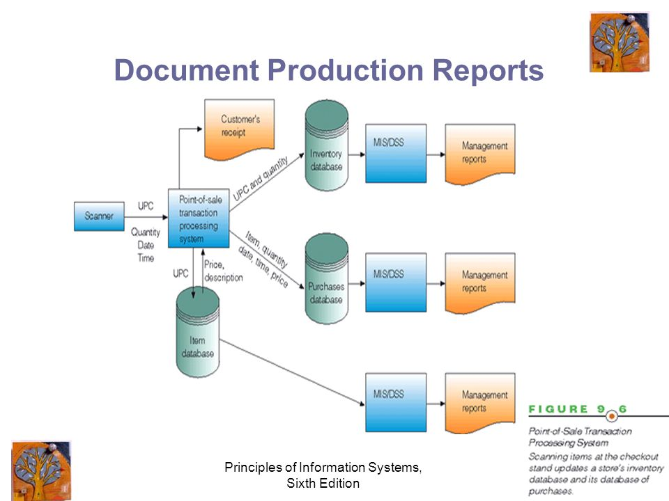 Principles of Information Systems, Sixth Edition Document Production Reports