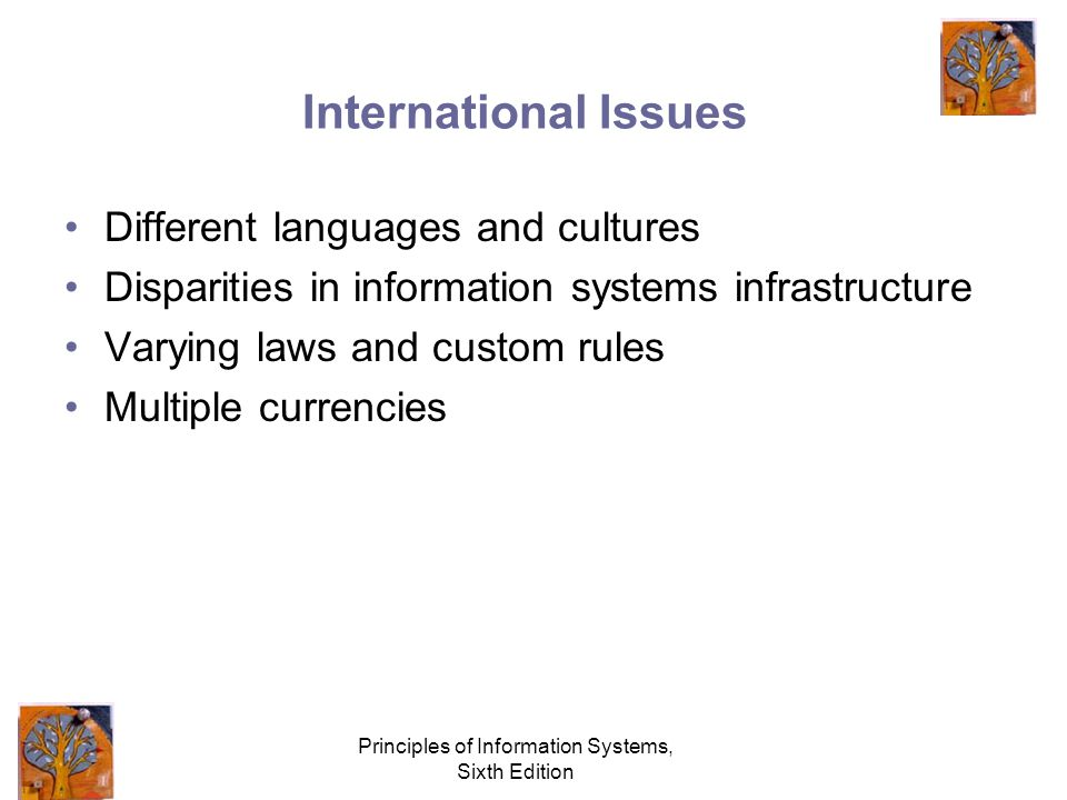 Principles of Information Systems, Sixth Edition International Issues Different languages and cultures Disparities in information systems infrastructure Varying laws and custom rules Multiple currencies