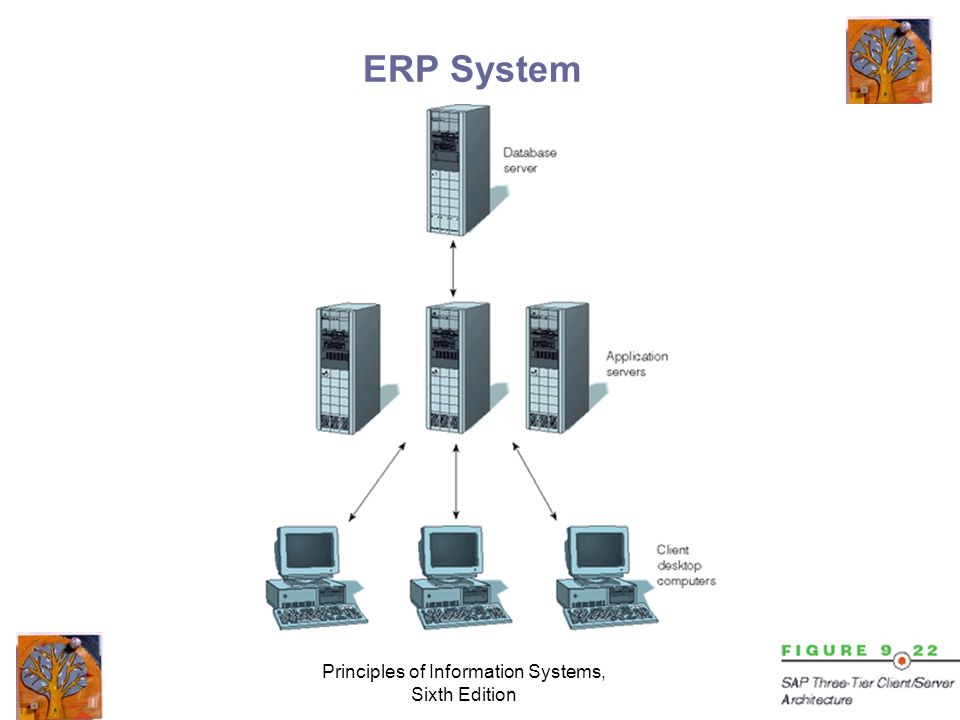 Principles of Information Systems, Sixth Edition ERP System