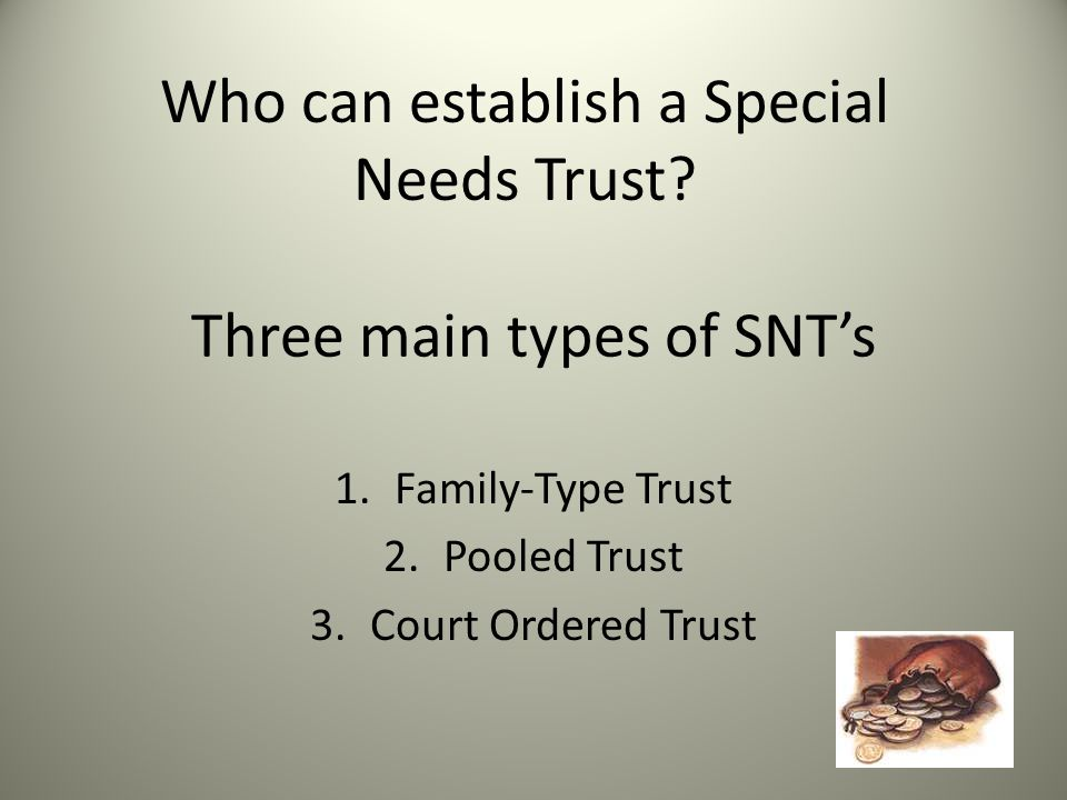 Three main types of SNT's 1.Family-Type Trust 2.Pooled Trust 3.Court Ordered Trust Who can establish a Special Needs Trust