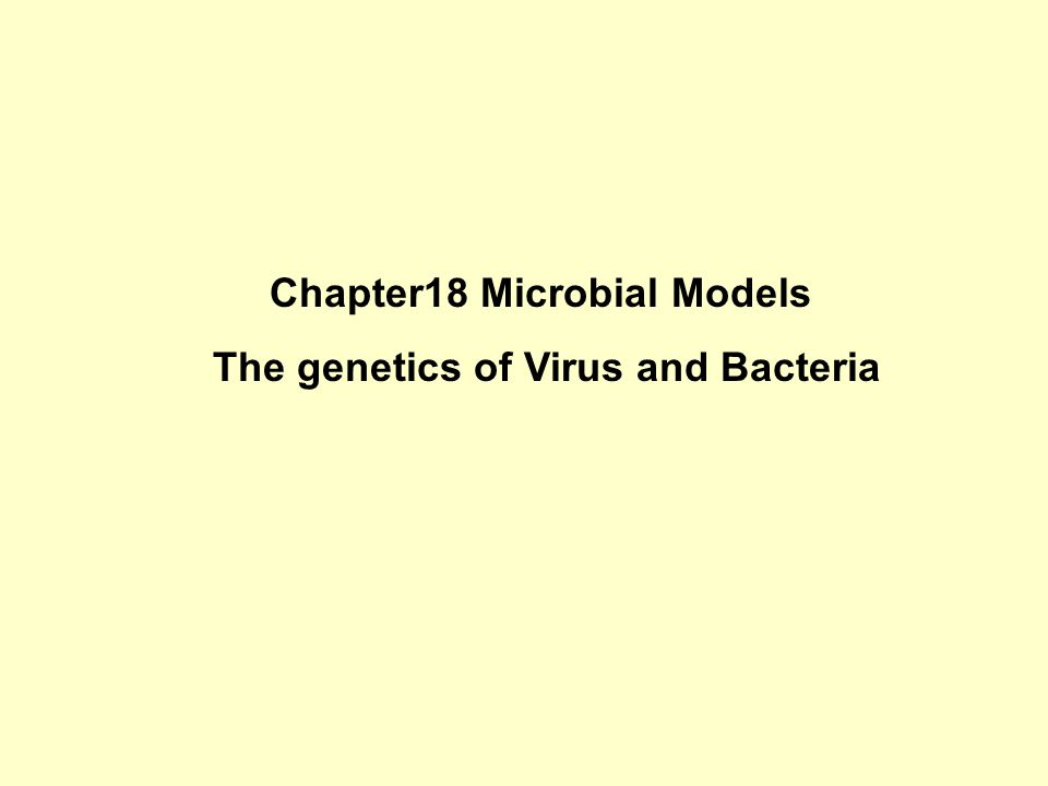 Chapter18 Microbial Models The genetics of Virus and Bacteria