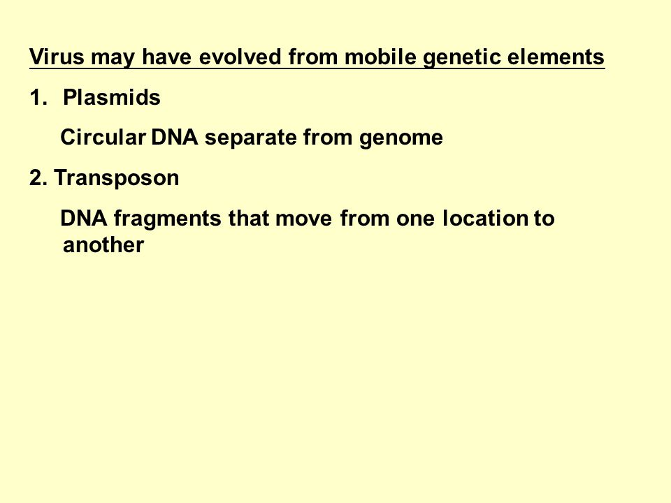 Virus may have evolved from mobile genetic elements 1.Plasmids Circular DNA separate from genome 2.